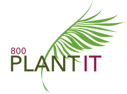 800 Plantit - Live Plants. Anywhere, Anytime.
