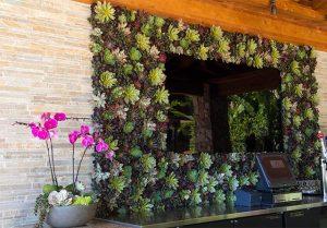 trade show succulents