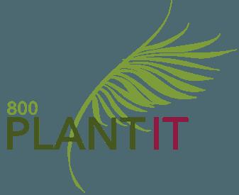 800 Plant It