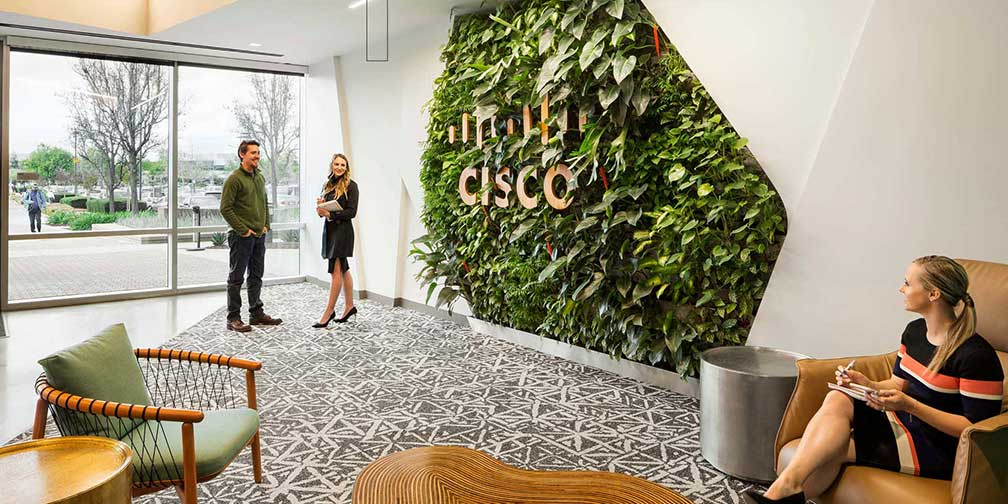 Living wall for Cisco. Photo from workforce.com
