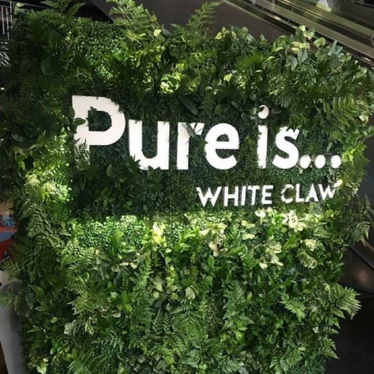 A picture of White Claw's living wall