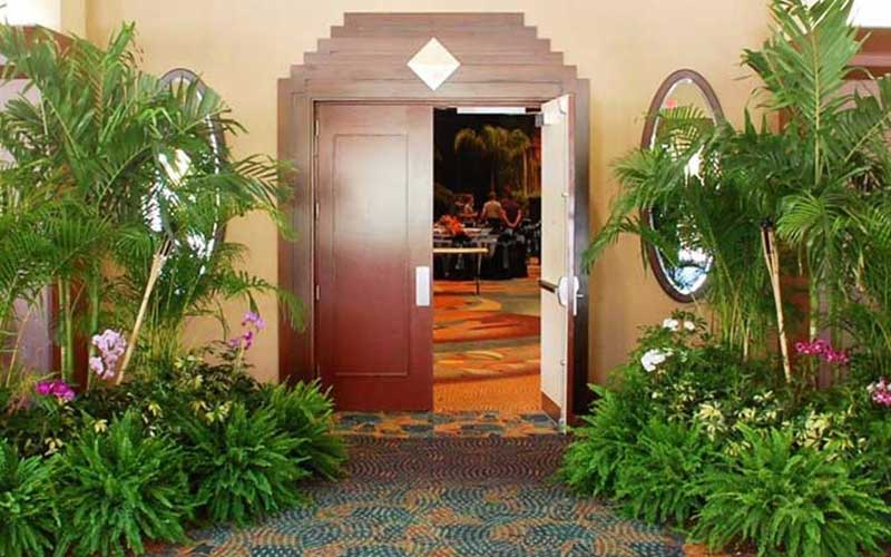 Plants used to decorate and define an entrance.