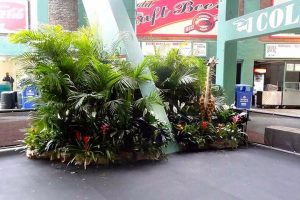 Large scale jungle theme at an iconic venue. This is just one small section of the