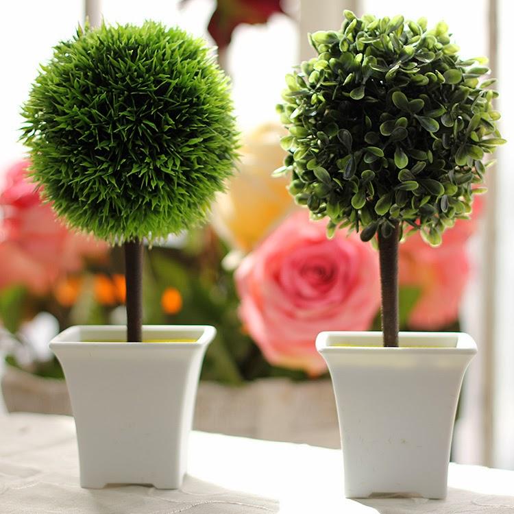 Lifestyle Benefits of Plants