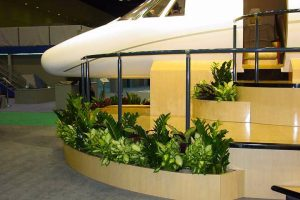 Low profile planters define the display place for Cessna planes in the hangar.
