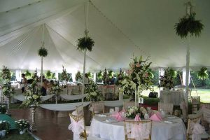 Enhance the venue of your wedding with live plants and flowers.