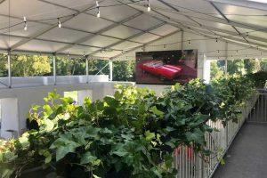 Plant Design - BMW PGA Championship