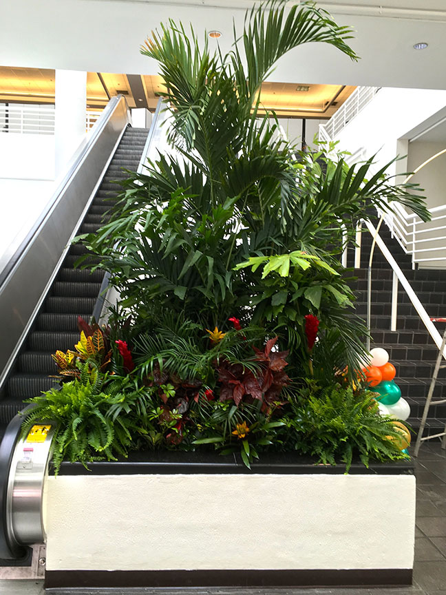 Stairway planter at show venue